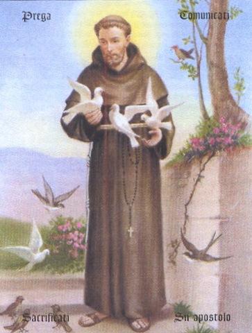 San Francesco D Assisi Patrono D Italia Prontofrancesca It